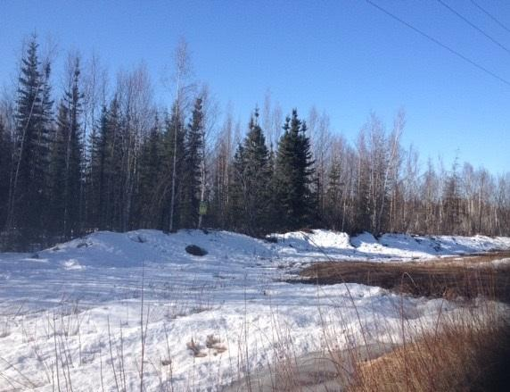 nhn Bradway Road, North Pole, AK 99705 (MLS #133782) :: Madden Real Estate