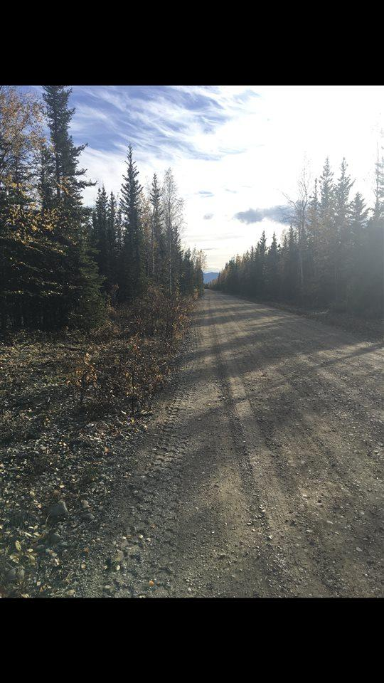 NHN Warren Street, Delta Junction, AK 99737 (MLS #138208) :: Madden Real Estate