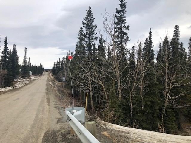 NHN George Parks Highway, Healy, AK 99743 (MLS #139909) :: Madden Real Estate