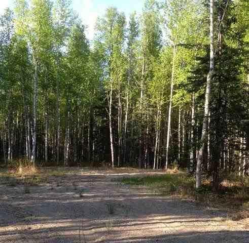 L8 Janie Lane, Delta Junction, AK 99737 (MLS #140067) :: Madden Real Estate