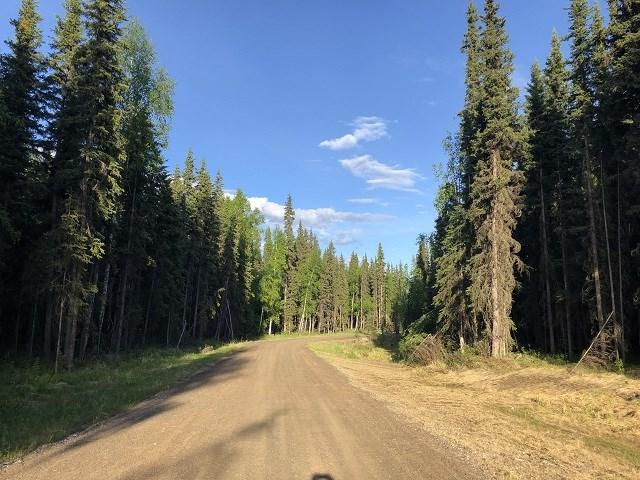 NHN Northland Drive, North Pole, AK 99705 (MLS #140854) :: Madden Real Estate