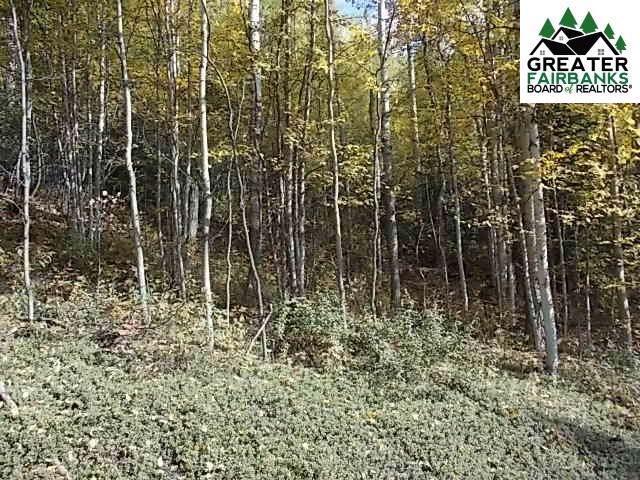 136 Eagle Ridge Road, Fairbanks, AK 99712 (MLS #142059) :: Madden Real Estate