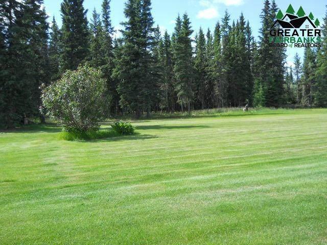 5051 Souhrada Street, Delta Junction, AK 99737 (MLS #143475) :: Madden Real Estate