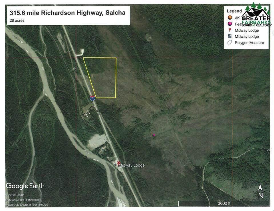 315.6 mile Richardson Highway - Photo 1