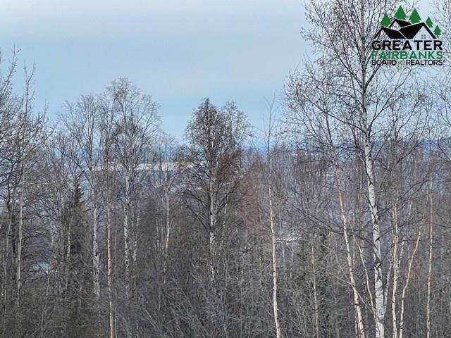 nhn Golden Heart Drive, Fairbanks, AK 99709 (MLS #145548) :: RE/MAX Associates of Fairbanks