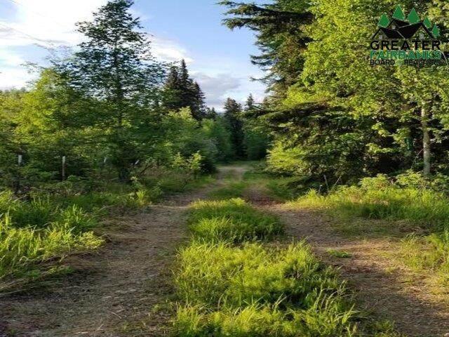 2910 Bonanza Trail - Photo 1