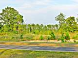 0 (South Tract) Sugar Maple Road - Photo 3