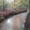 Buckhorn Road - Photo 5