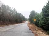 TBD Kathleen (Lt 117) Road - Photo 1