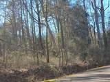 876 Elderberry Drive - Photo 1