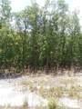 Fawn Trail - Photo 1