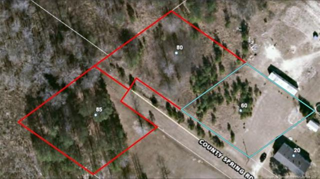 60, 80, 85 County Springs Road, Bunnlevel, NC 28323 (MLS #603022) :: Weichert Realtors, On-Site Associates