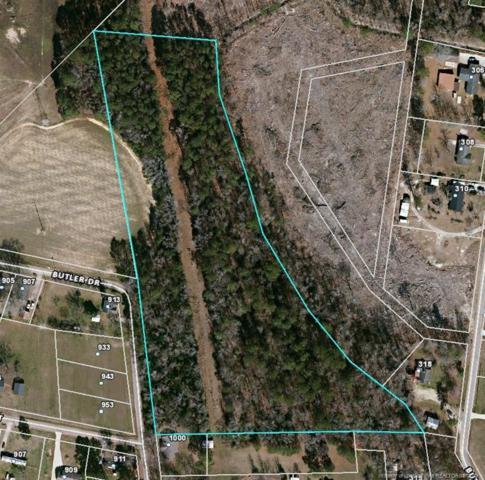 Butler Drive, Erwin, NC 28339 (MLS #604823) :: Weichert Realtors, On-Site Associates