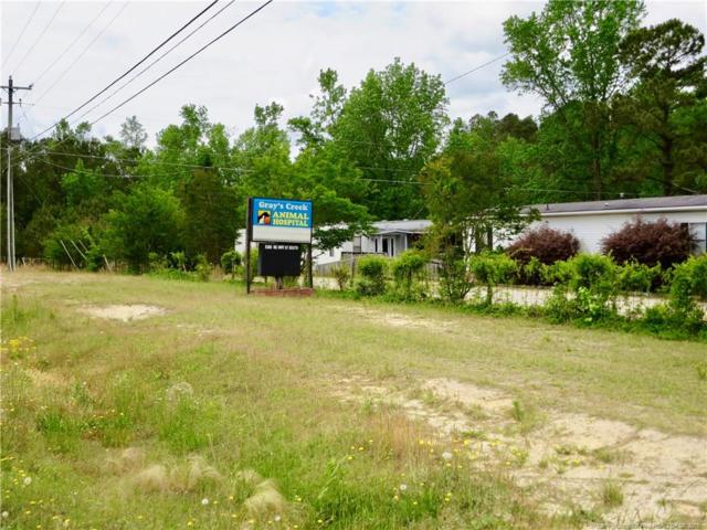 5388 S Highway 87 S, Fayetteville, NC 28306 (MLS #606854) :: Weichert Realtors, On-Site Associates