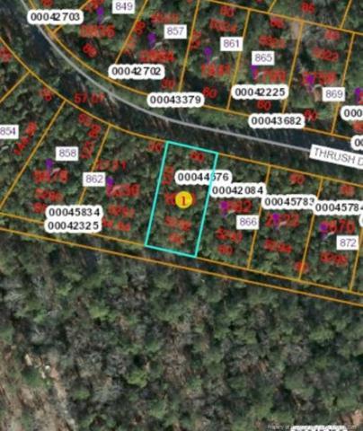 864 Trush Drive, Vass, NC 28394 (MLS #607116) :: Weichert Realtors, On-Site Associates