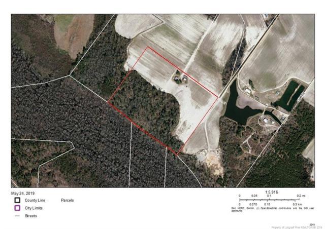 Raynham Road, Fairmont, NC 28340 (MLS #607666) :: Weichert Realtors, On-Site Associates