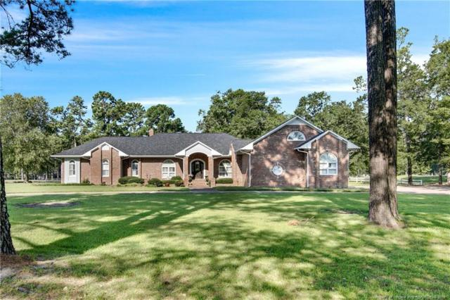 1007 Wild Pine Drive, Fayetteville, NC 28312 (MLS #610461) :: The Rockel Group
