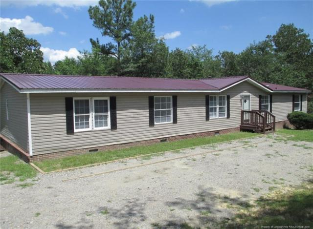 130 Sandspur Lane, Sanford, NC 27330 (MLS #610726) :: Weichert Realtors, On-Site Associates