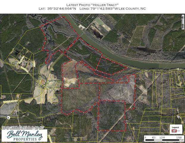 Avents Ferry Road, Sanford, NC 27330 (MLS #611266) :: Weichert Realtors, On-Site Associates