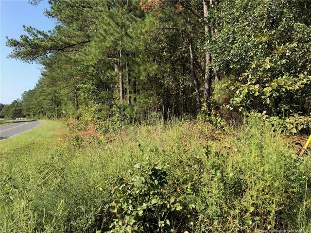 Hillmon Grove Road, Cameron, NC 28326 (MLS #616400) :: The Rockel Group