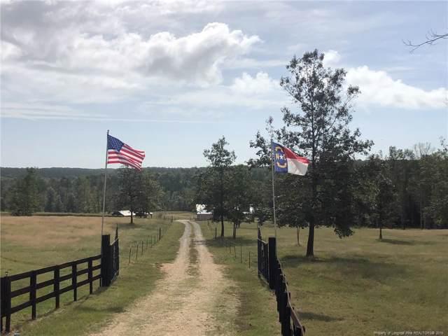 S River Road, Lillington, NC 27546 (MLS #618536) :: The Rockel Group