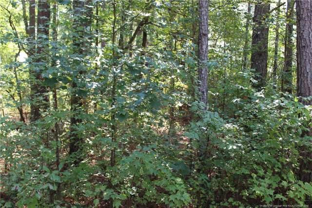 1018 N Windrace Trail, Sanford, NC 27330 (MLS #618564) :: Weichert Realtors, On-Site Associates