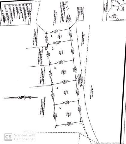 Lee Britt Road, Lumberton, NC 28358 (MLS #619166) :: The Rockel Group