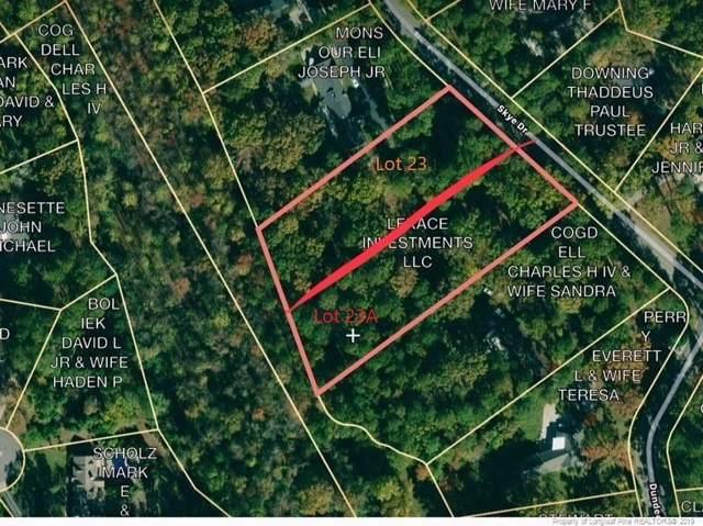 2833 Skye Drive, Fayetteville, NC 28303 (MLS #621849) :: Weichert Realtors, On-Site Associates