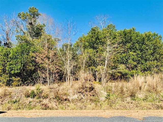 88 Suitt Road, Lillington, NC 27546 (MLS #624508) :: Weichert Realtors, On-Site Associates