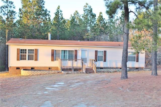 175 Papoose Trail, Lillington, NC 27546 (MLS #625098) :: Weichert Realtors, On-Site Associates