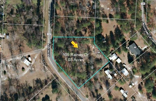 105 Rainey Drive, Spring Lake, NC 28390 (MLS #625335) :: Weichert Realtors, On-Site Associates