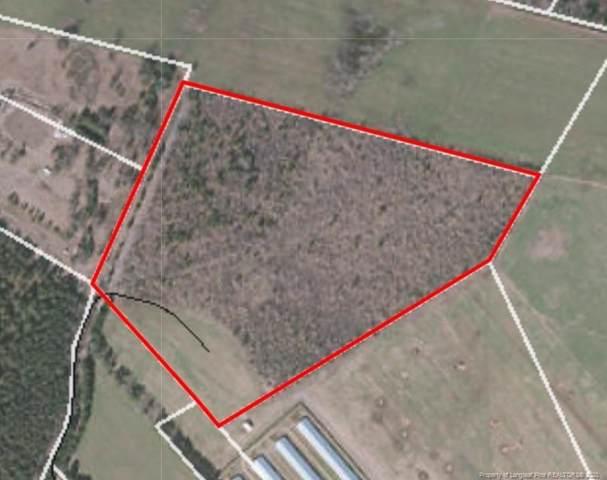 0 Hammonds Road, Lumberton, NC 28384 (MLS #625383) :: Weichert Realtors, On-Site Associates