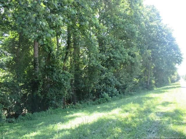 Us 421 Highway N, Lillington, NC 27546 (MLS #626941) :: Weichert Realtors, On-Site Associates