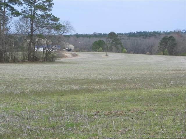 0 Raven Rock Road, Lillington, NC 27546 (MLS #628333) :: Weichert Realtors, On-Site Associates