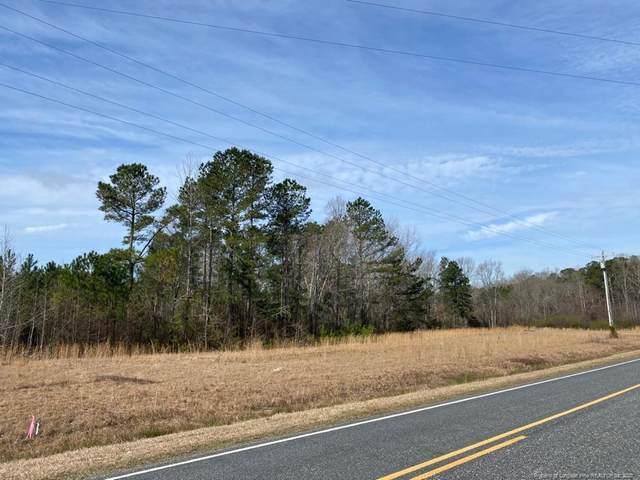 Darroch Road, Lillington, NC 27546 (MLS #628530) :: Weichert Realtors, On-Site Associates