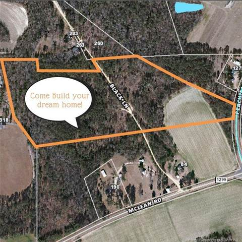 Black Lane, Lillington, NC 27546 (MLS #629659) :: Weichert Realtors, On-Site Associates