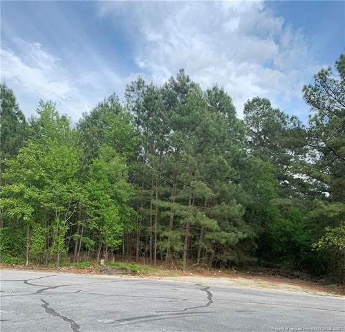 Muskegon Drive, Fayetteville, NC 28311 (MLS #632190) :: On Point Realty