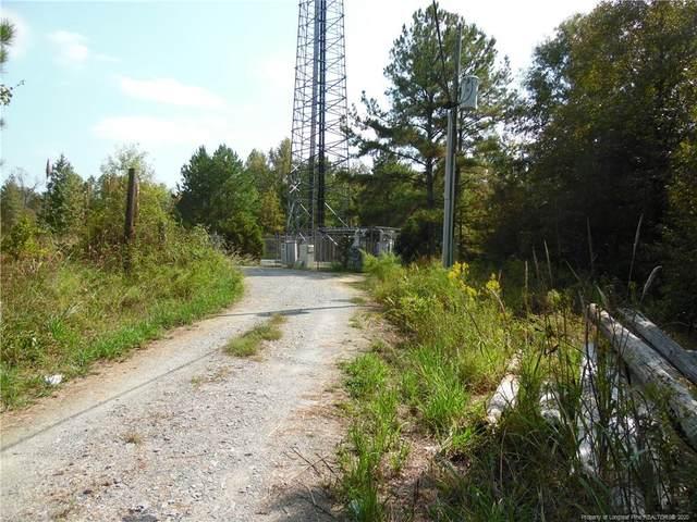 3348 Gabe Smith Road, Wade, NC 28395 (MLS #632949) :: Weichert Realtors, On-Site Associates