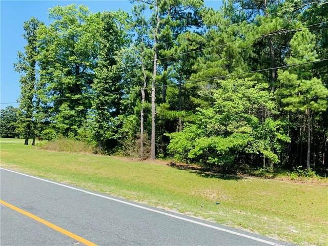 C P Stewart Road, Lillington, NC 27546 (MLS #636231) :: Weichert Realtors, On-Site Associates