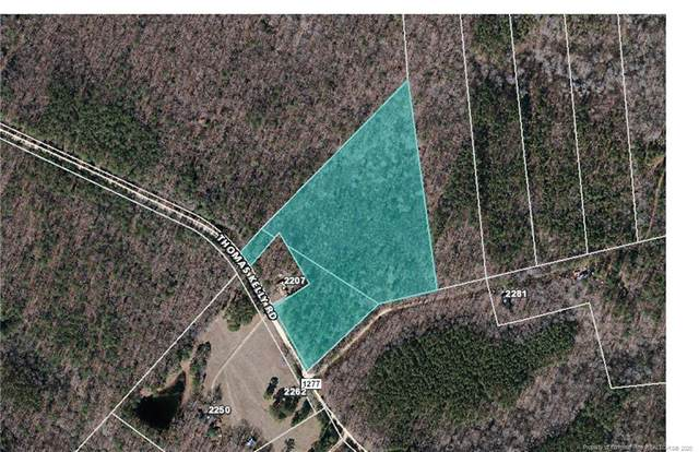 TBD Thomas Kelly Road, Broadway, NC 27505 (MLS #636622) :: The Signature Group Realty Team