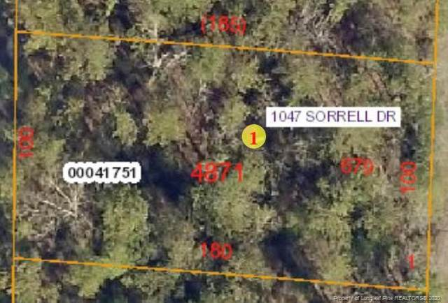 1047 Sorrell Drive, Vass, NC 28394 (MLS #636887) :: Premier Team of Litchfield Realty