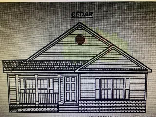 2861 Oak Grove Church Road, Angier, NC 27501 (MLS #637018) :: Weichert Realtors, On-Site Associates