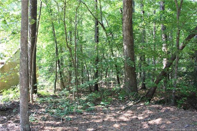5117 Pheasant Lane, Sanford, NC 27330 (MLS #637042) :: Weichert Realtors, On-Site Associates