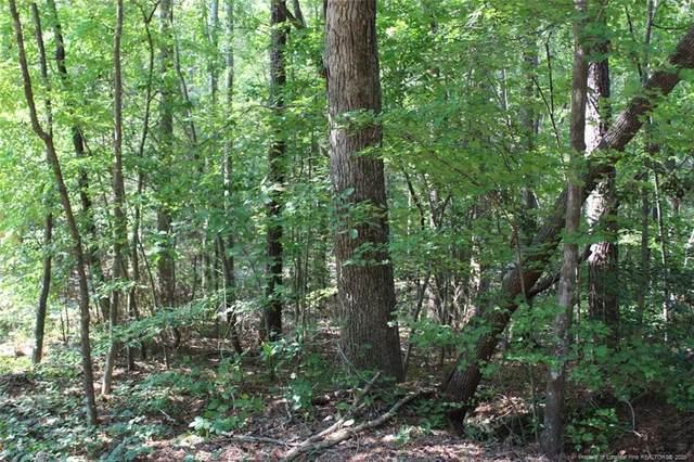 999 N Windrace Trail, Sanford, NC 27332 (MLS #637046) :: Weichert Realtors, On-Site Associates