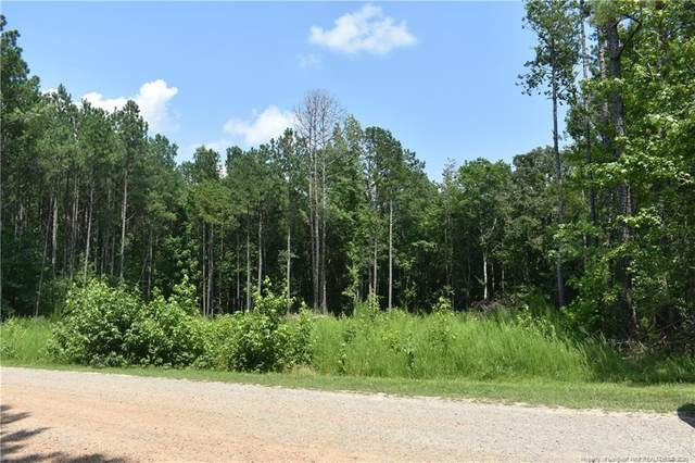 Lot 8 River Ridge Drive, Broadway, NC 27505 (MLS #638209) :: The Signature Group Realty Team