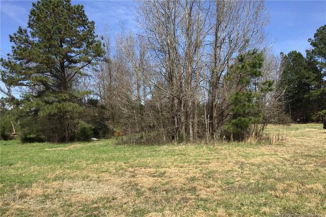 700 Edwards Brothers Drive, Lillington, NC 27546 (MLS #638826) :: The Signature Group Realty Team