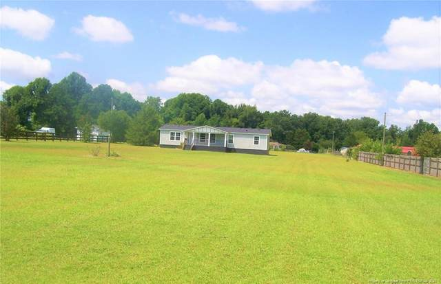 781 Cummings Road, Lillington, NC 27546 (MLS #639455) :: The Signature Group Realty Team