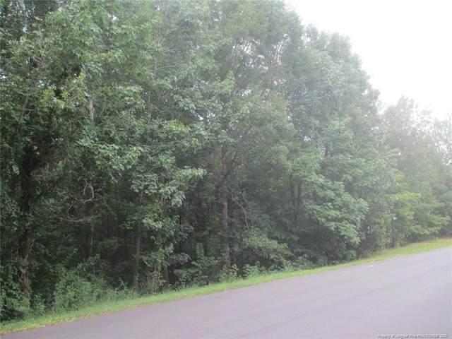 Lot 1 Sec VI Woodyhill Lane, Sanford, NC 27330 (MLS #639589) :: Weichert Realtors, On-Site Associates
