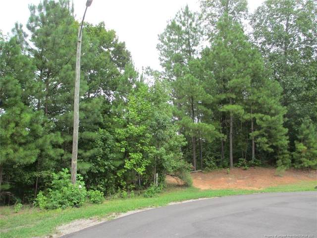 Lot 11 Sec VI Woodyhill Lane, Sanford, NC 27330 (MLS #639590) :: Weichert Realtors, On-Site Associates