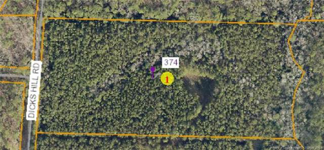 374 Dicks Hill Road, Carthage, NC 28327 (MLS #640193) :: Freedom & Family Realty
